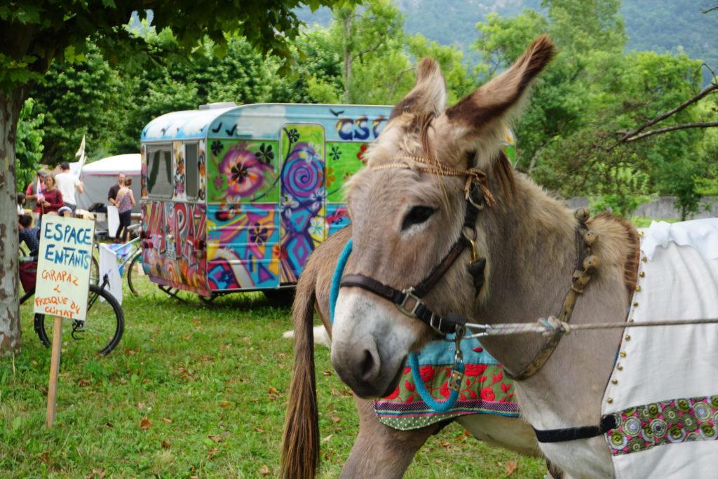 Un âne participe au festival du Grand Virage